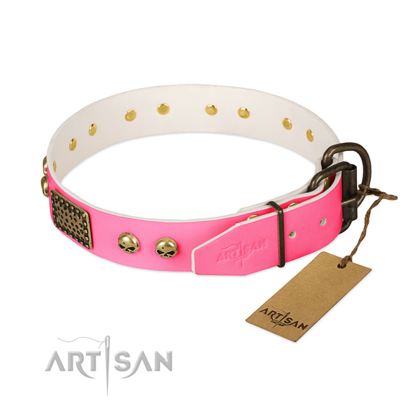 Rust resistant fittings on daily use dog collar