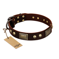 """Magic Amulet"" Brown Leather Mastiff Collar with Skulls and Plates"