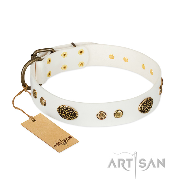 Rust-proof embellishments on full grain natural leather dog collar for your doggie