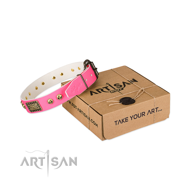 Durable buckle on dog collar for easy wearing