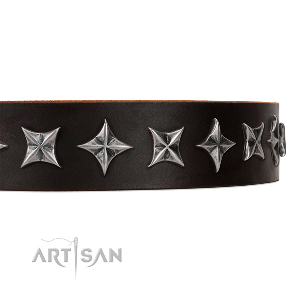 Walking adorned dog collar of finest quality leather