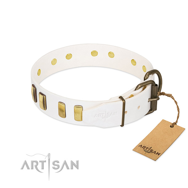 Reliable natural leather dog collar with reliable fittings