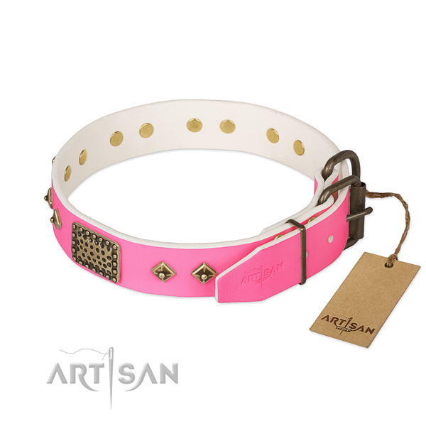 Corrosion resistant studs on comfortable wearing dog collar