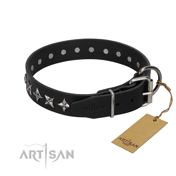 Stylish walking studded dog collar of reliable full grain genuine leather