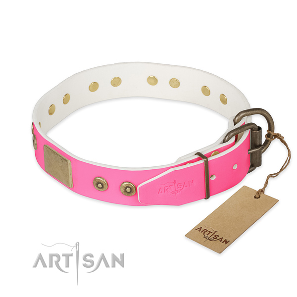 Corrosion resistant studs on easy wearing dog collar