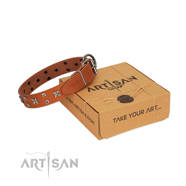Soft to touch full grain genuine leather dog collar with studs for daily walking