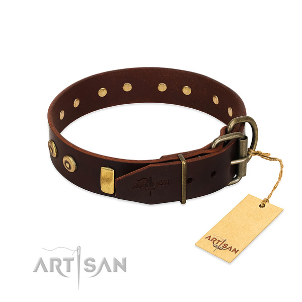 Top rate natural leather dog collar with awesome embellishments