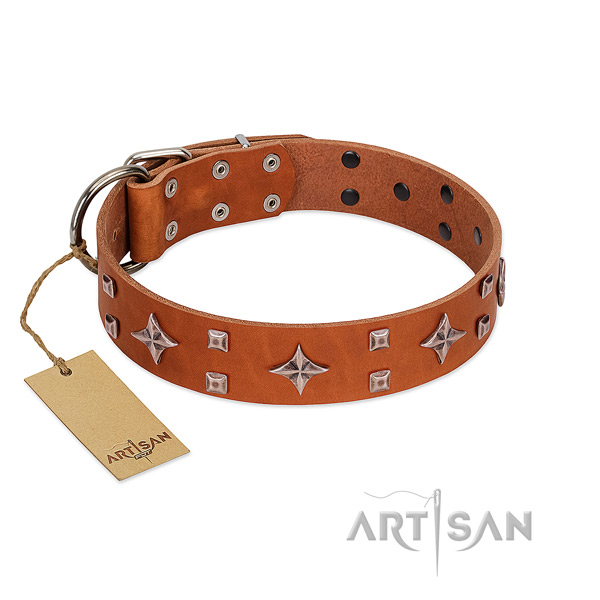 Remarkable genuine leather collar for your doggie walking in style