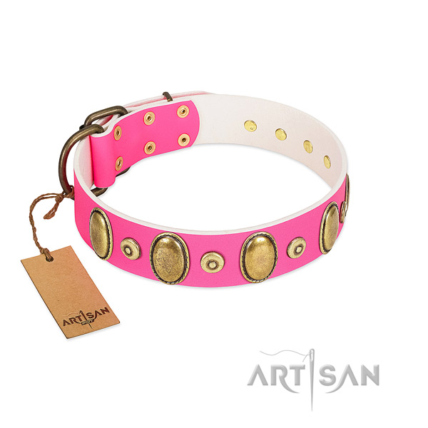 Quality natural leather collar with corrosion resistant decorations for your pet