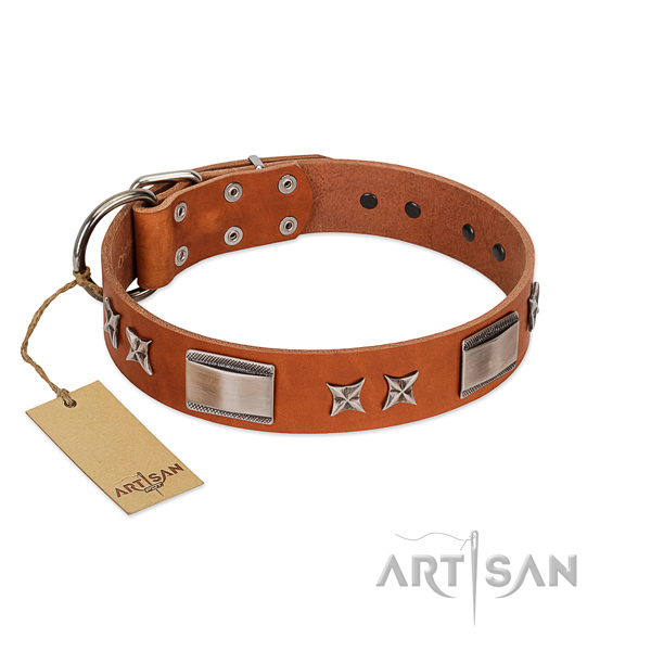 Awesome dog collar of natural leather