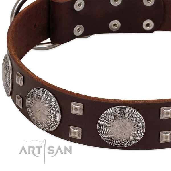 Everyday walking leather dog collar