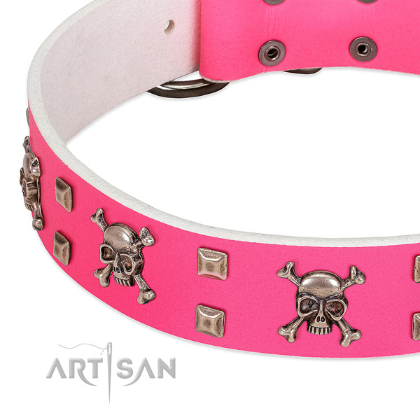 Corrosion resistant D-ring on full grain leather dog collar