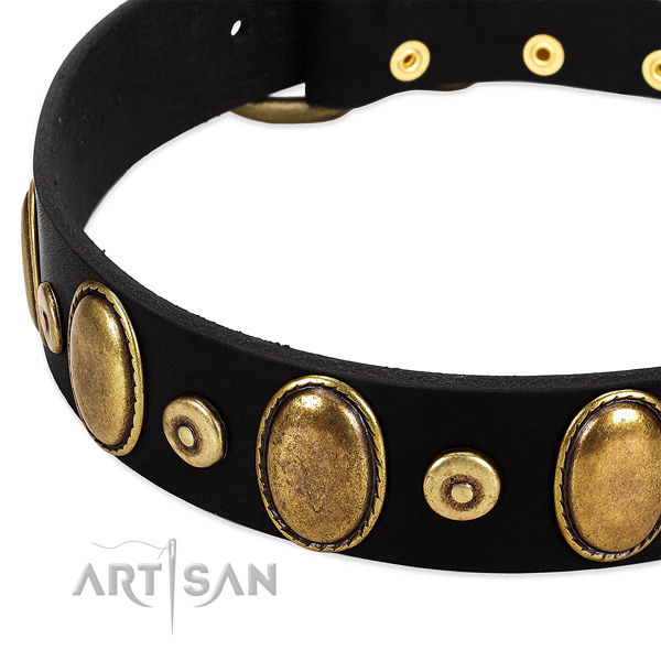 Inimitable genuine leather collar for your handsome doggie