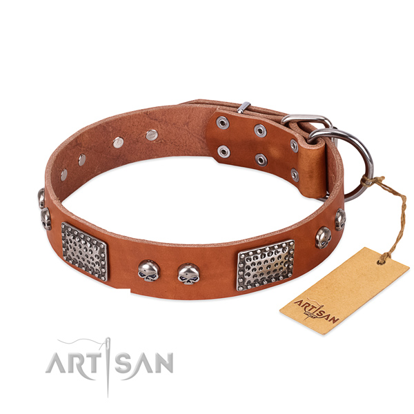Easy wearing genuine leather dog collar for stylish walking your canine
