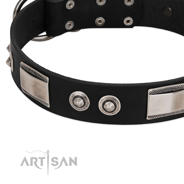 Studded collar of genuine leather for your impressive pet