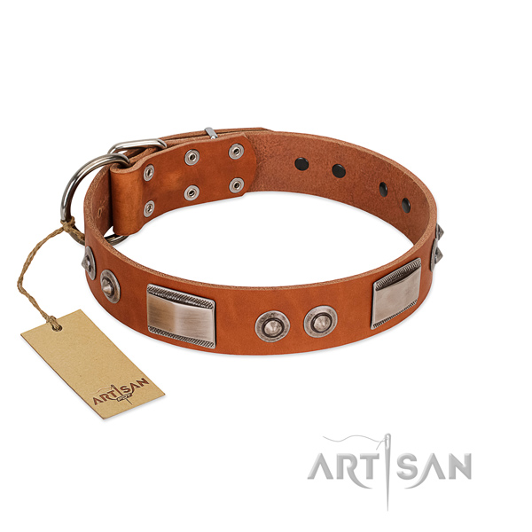 Easy wearing natural leather collar with decorations for your canine