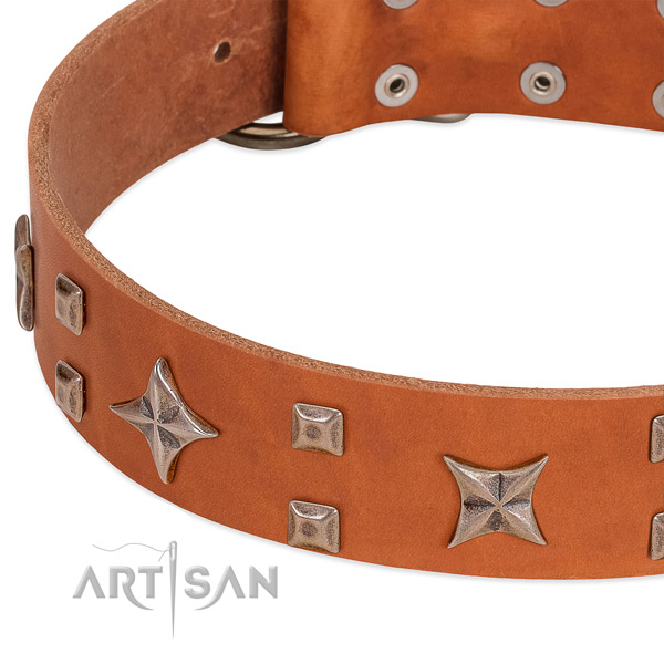Rust resistant fittings on natural genuine leather collar for everyday walking your doggie