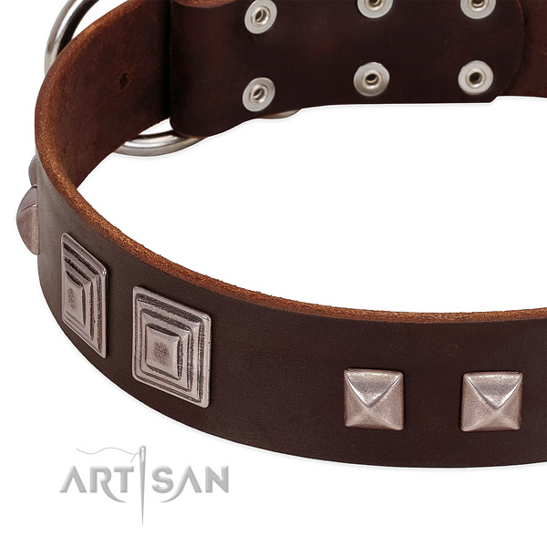 Rust-proof traditional buckle on leather dog collar for easy wearing