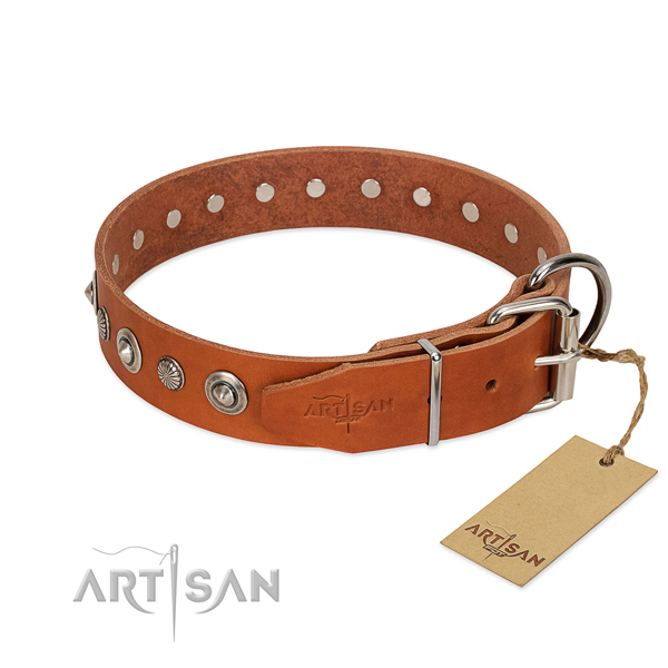 Finest quality natural leather dog collar with impressive adornments