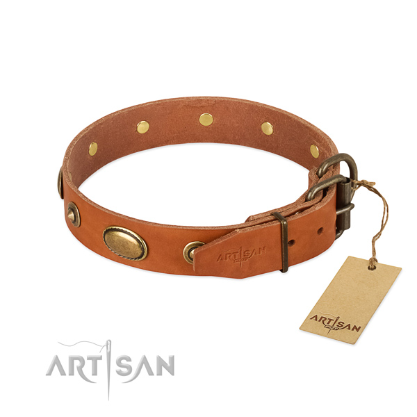 Strong buckle on natural leather dog collar for your four-legged friend