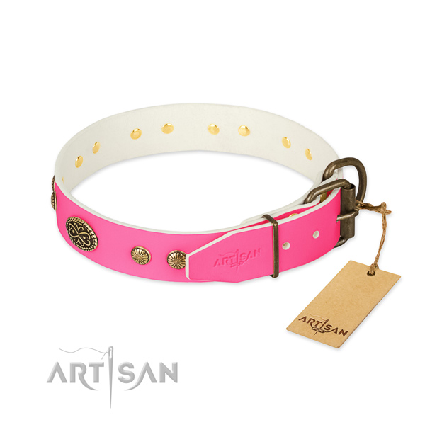 Strong adornments on full grain natural leather dog collar for your doggie