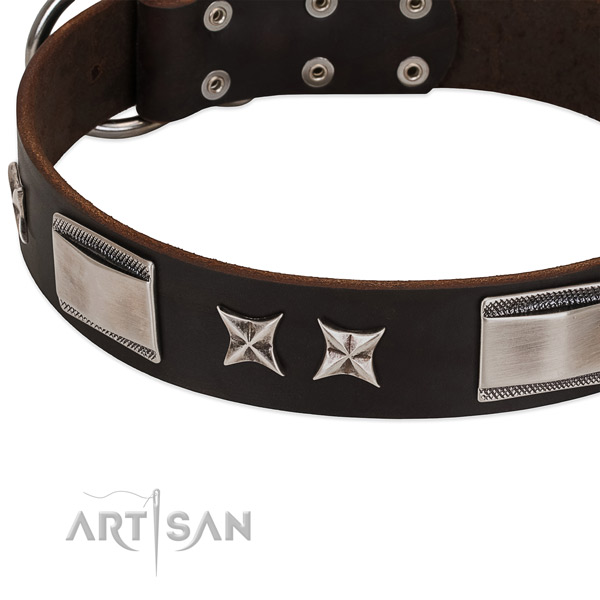 Reliable full grain genuine leather dog collar with corrosion proof fittings