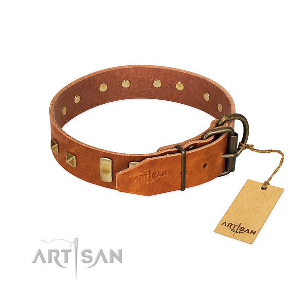Reliable leather dog collar with durable D-ring