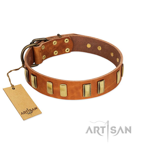 Top notch full grain genuine leather dog collar with corrosion proof hardware