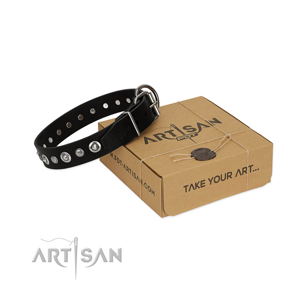 Best quality full grain natural leather dog collar with exceptional adornments