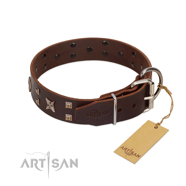 Full grain genuine leather dog collar with unusual adornments