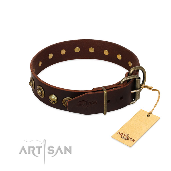 Leather collar with extraordinary studs for your pet
