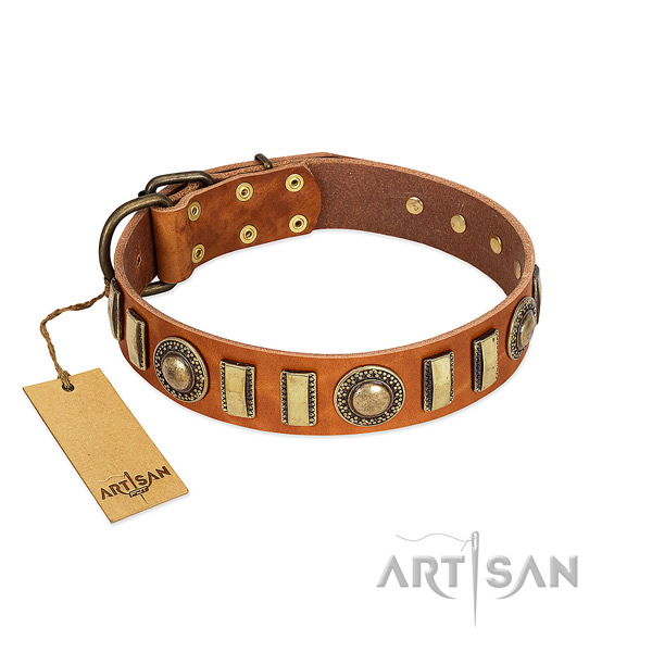 Top rate leather dog collar with strong buckle