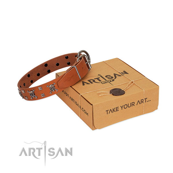 Flexible full grain leather dog collar with strong traditional buckle