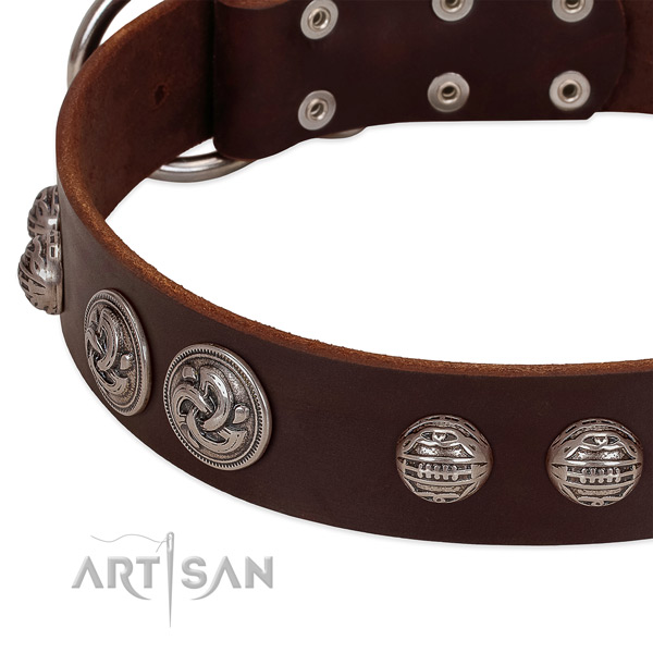 Reliable hardware on full grain natural leather collar for daily walking your canine