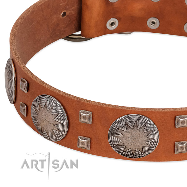 Everyday use gentle to touch leather dog collar