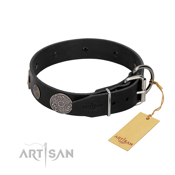 Rust resistant studs on full grain natural leather dog collar