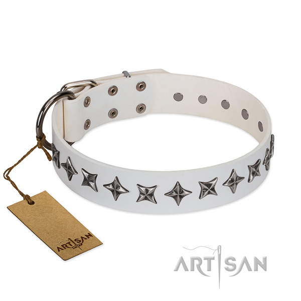 Comfortable wearing dog collar of durable natural leather with adornments