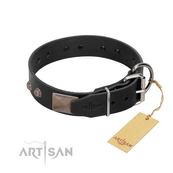 Extraordinary genuine leather dog collar for daily walking your pet