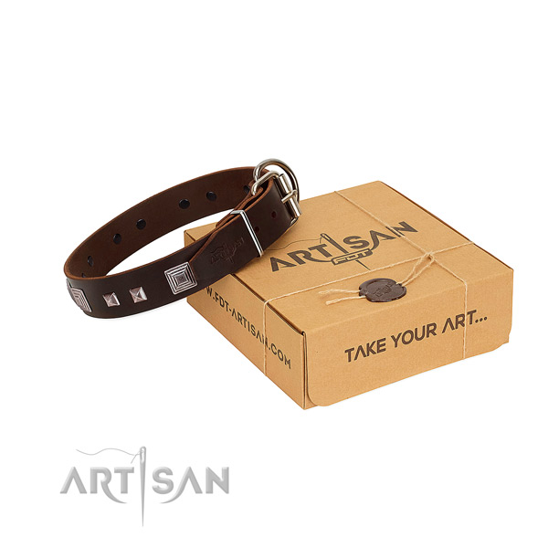 Stunning genuine leather collar with decorations for your four-legged friend