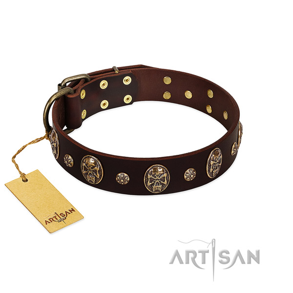 Exquisite full grain genuine leather collar for your four-legged friend