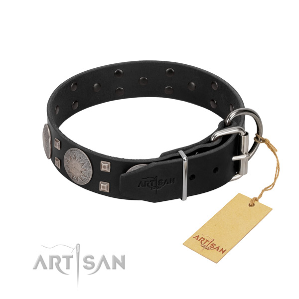 Exquisite full grain genuine leather dog collar for everyday walking your pet