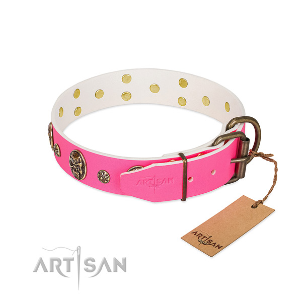 Corrosion proof traditional buckle on full grain genuine leather collar for everyday walking your pet