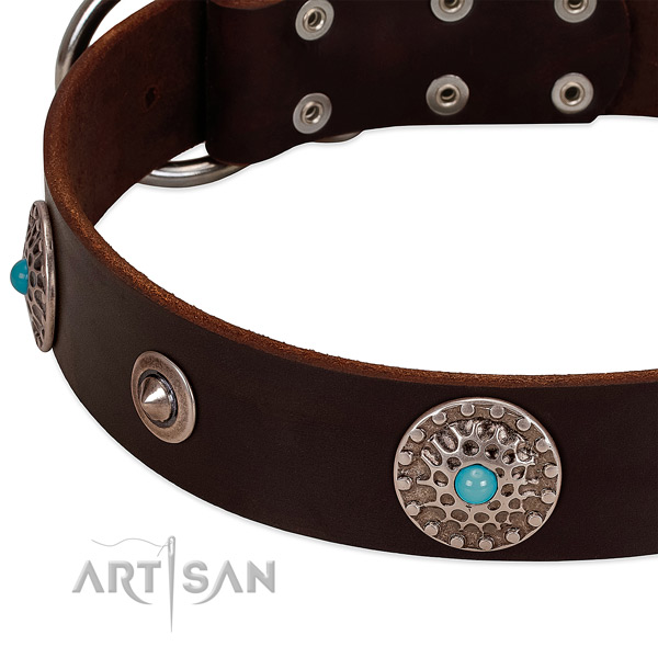 Decorated collar of natural leather for your lovely four-legged friend