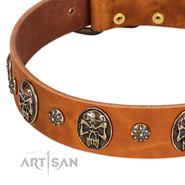 Rust resistant buckle on natural genuine leather dog collar for your doggie