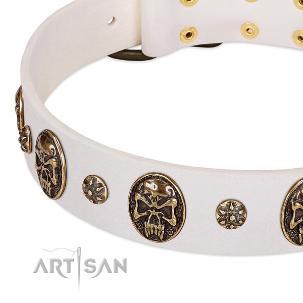 Corrosion proof buckle on natural genuine leather dog collar for your pet