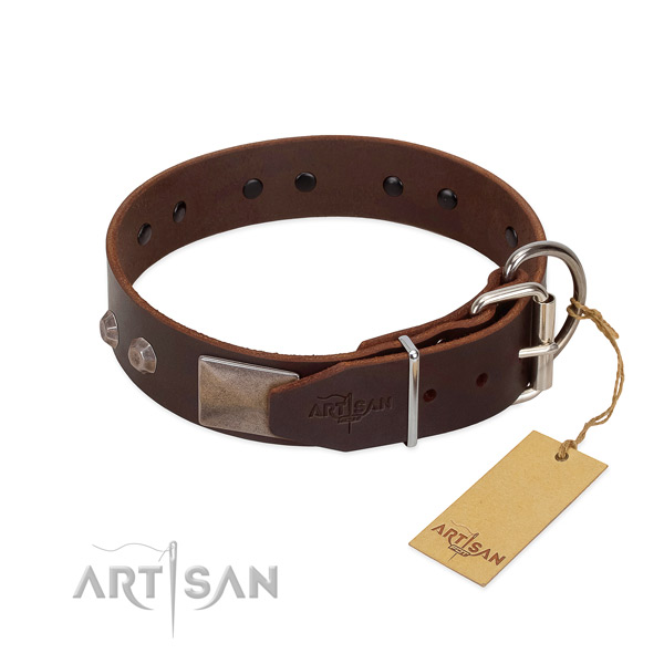 Unusual leather dog collar for walking your doggie
