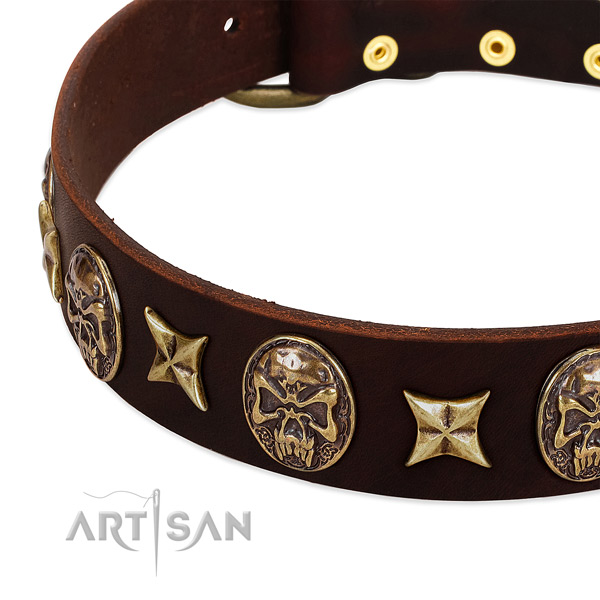 Durable traditional buckle on full grain genuine leather dog collar for your canine
