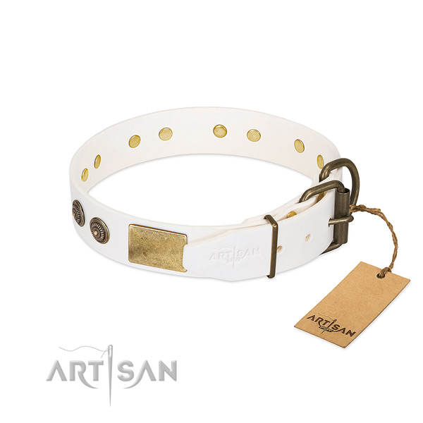 Corrosion proof hardware on full grain natural leather collar for basic training your dog