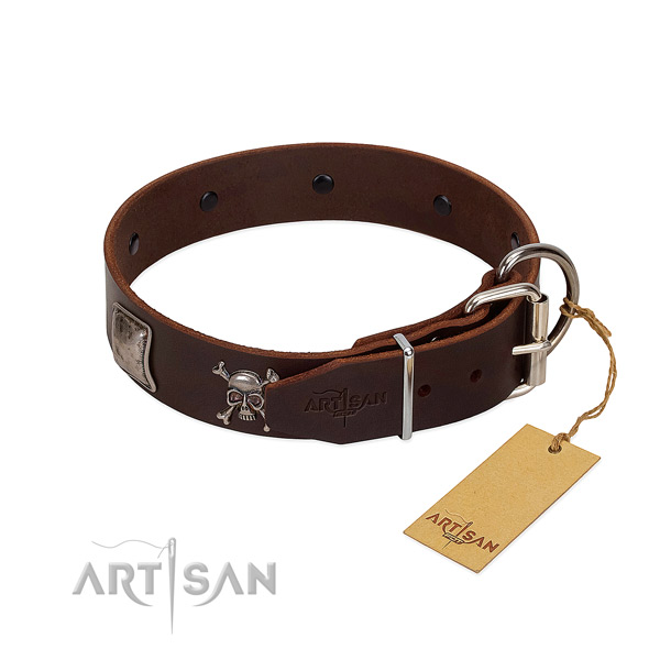 Unusual full grain leather collar for your impressive doggie