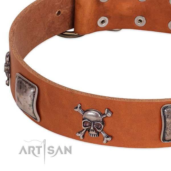 Corrosion proof traditional buckle on full grain leather dog collar